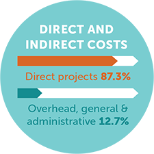 Direct project costs: 87.3%; overhead, general, and administrative costs: 12.7%